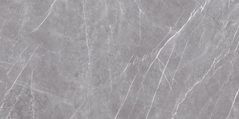 Greystone Argent Tile Polished 60x120cm