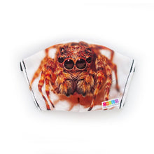 Load image into Gallery viewer, Chico Children's Museum Jumping Spider: Art Print Face Mask- Adult