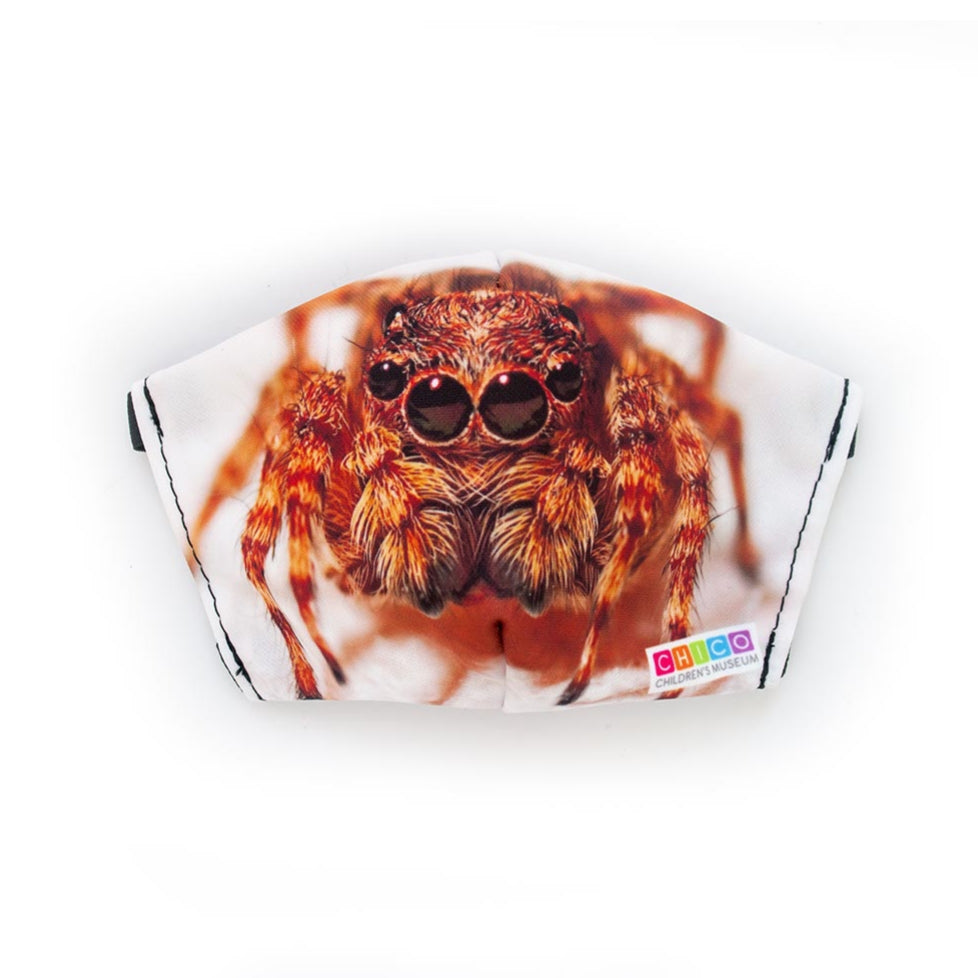 Chico Children's Museum Jumping Spider: Art Print Face Mask- Adult