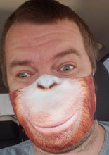 Load image into Gallery viewer, Orangutan: Art Print Face Mask- Adult