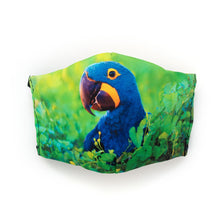 Load image into Gallery viewer, Hyacinth Macaw: Art Print Face Mask- Child
