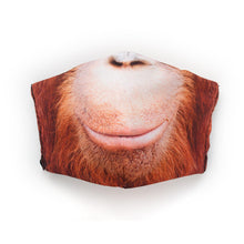 Load image into Gallery viewer, Orangutan: Art Print Face Mask- Child