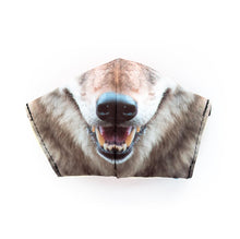 Load image into Gallery viewer, Coyote by Chris Mountain: Art Print Face Mask- Adult