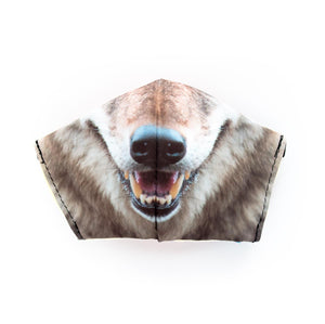 Coyote by Chris Mountain: Art Print Face Mask- Adult