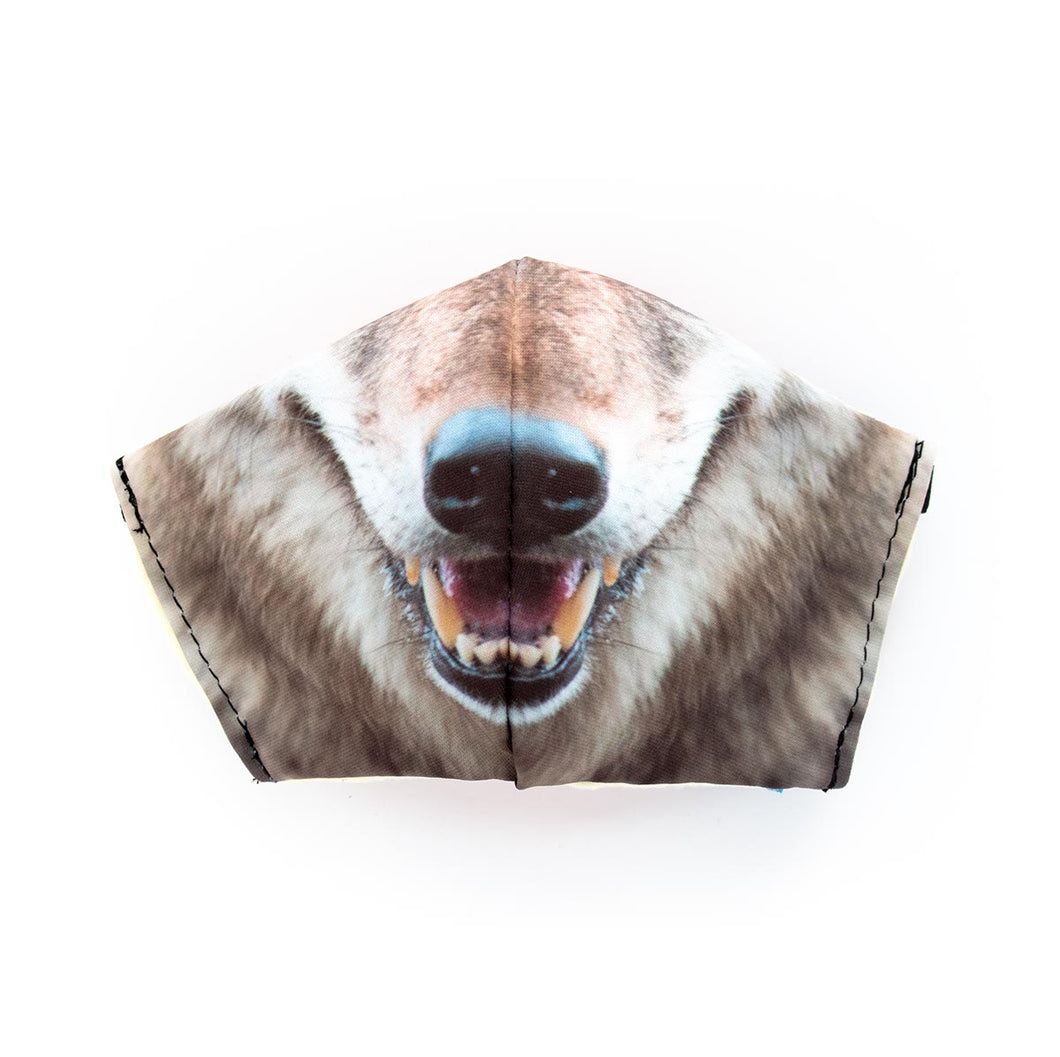 Coyote by Chris Mountain: Art Print Face Mask