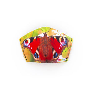 Chico Children's Museum Butterfly: Art Print Face Mask- Adult