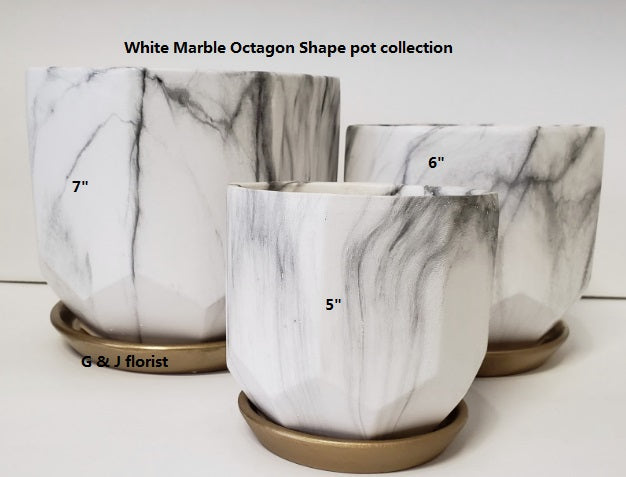 White marble octagon shape planter with gold saucer( style A) - G & J Florist