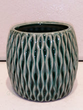 Load image into Gallery viewer, Green lucky bamboo planter - G & J Florist