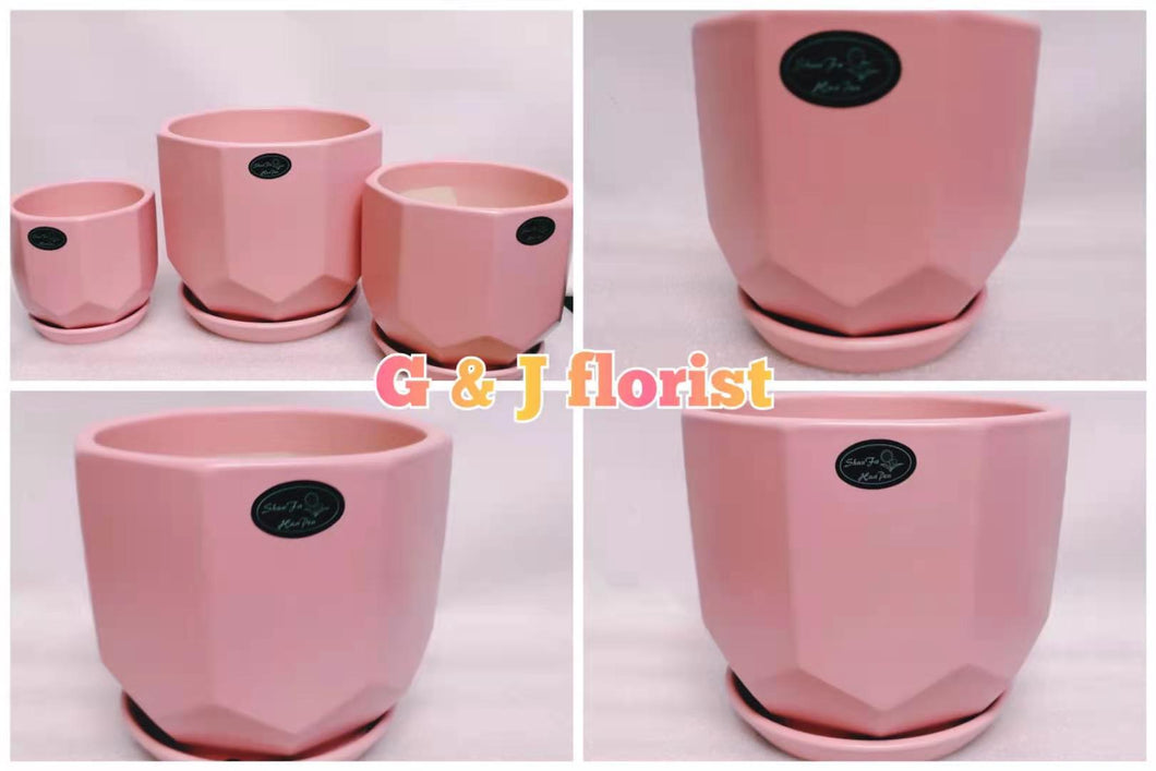 Simple pink  ceramic planter with drainage hole and attached saucer - G & J Florist