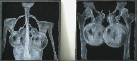 Female and Male terrorist captured on X - ray