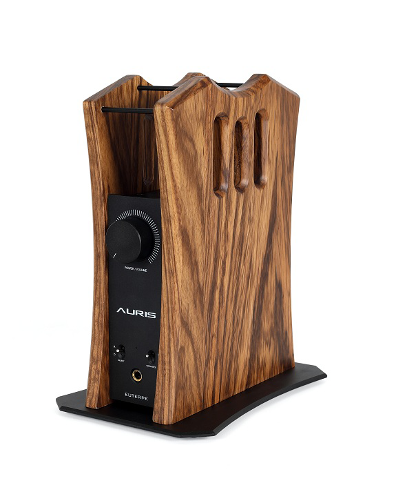 Auris Euterepe is all in one headphone amplifier with dac, pre amp and stand option.