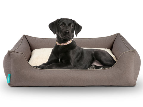 Dreamer Perfect Dog Bed