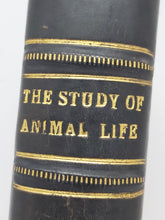 Load image into Gallery viewer, The Study of Animal Life, 1917