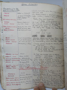 Handwritten Commonplace Book of Scriptural, Greek, and Roman History Notes, December 1769