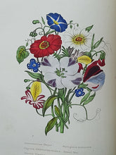 Load image into Gallery viewer, The Flower-Garden: containing directions for the cultivation of all garden flowers; with selected lists of the most approved annual, biennial and perennial flowering plants, 1847
