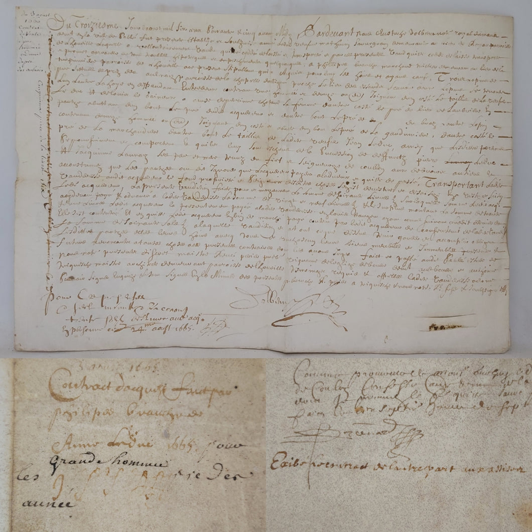 A Vellum document, August 24 1665