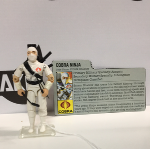 Hasbro G.I. Joe Storm Shadow v-1 with file card V-1