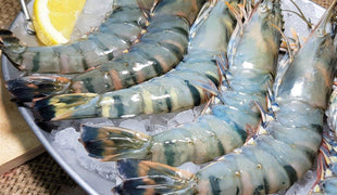 White Prawns and Tiger Prawns