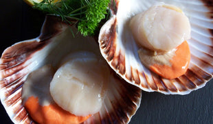 IQF Scallops Roe On (1kg)