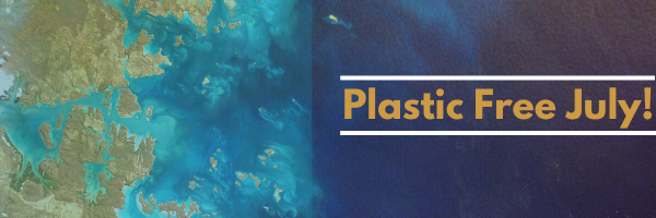Plastic Free July: Where to Start