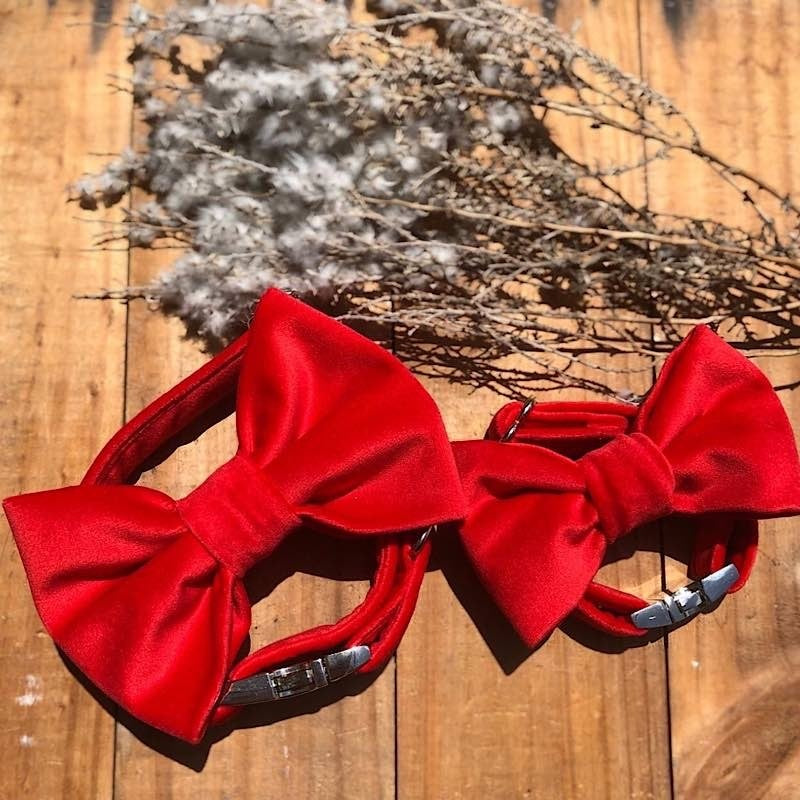 Red Velvet Bow Tie Collar
