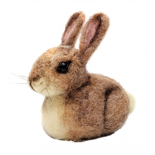 Load image into Gallery viewer, The Crafty Kit Company - Baby Bunny Needle Felting Kit