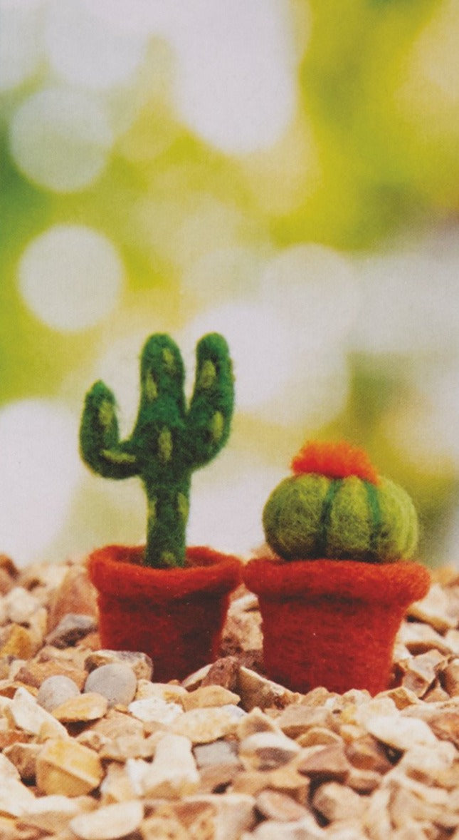 Needle Felting Cactus Kit - Makes 2