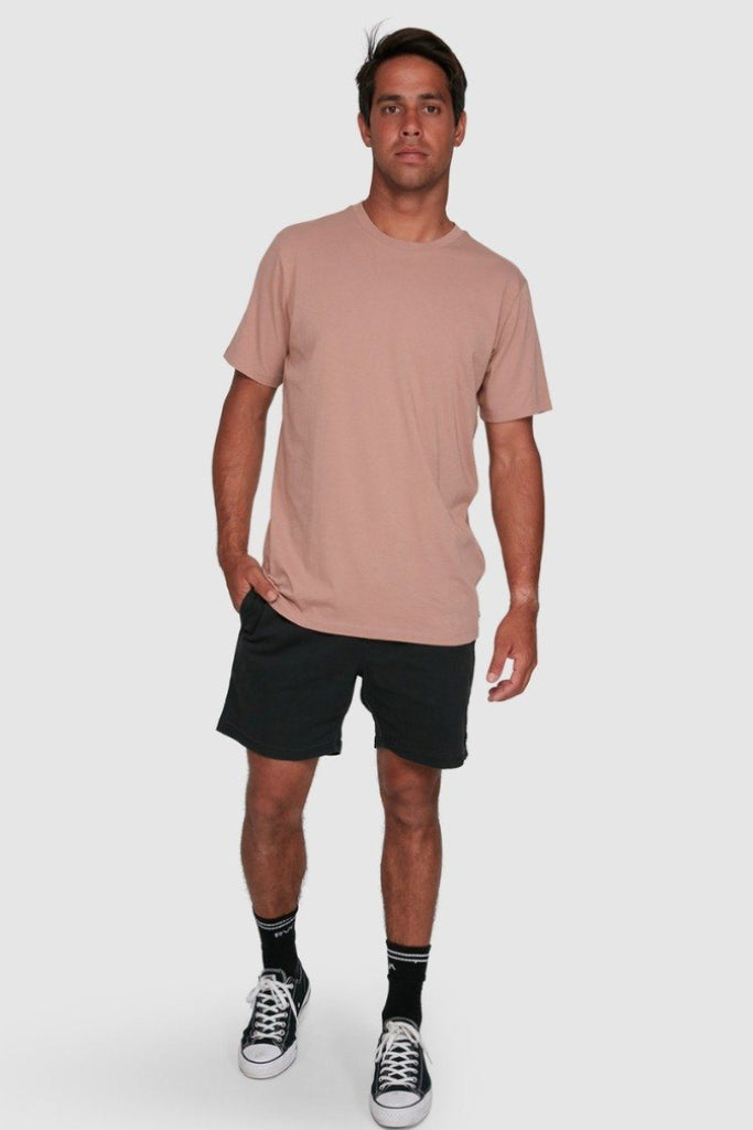 RVCA Rvca Washed Tee Blush Front Full