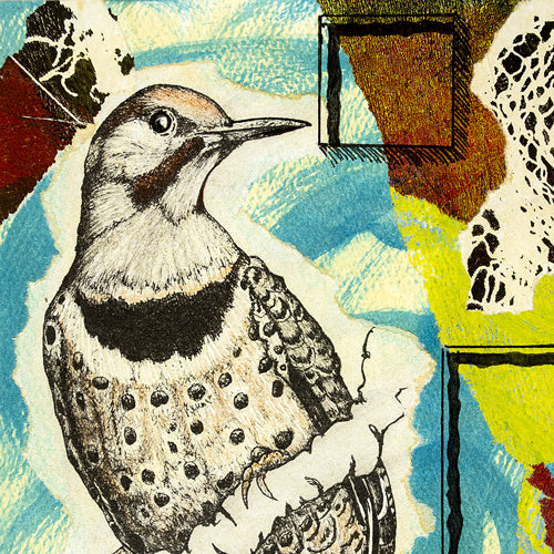 Birds, Mixed Media Collage Collection