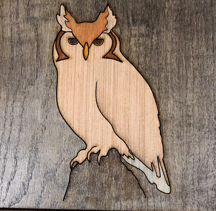 Owl 10x10 inches