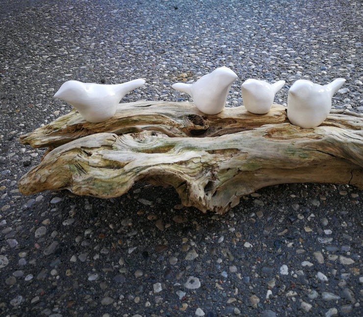 Four white birds on driftwood