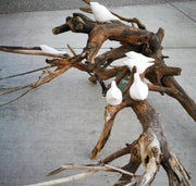 White Birds on Driftwood 6A