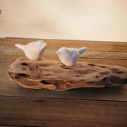 White Bird on Driftwood 2D