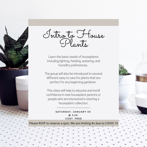 Intro To House Plant Class 1/30 @3:30