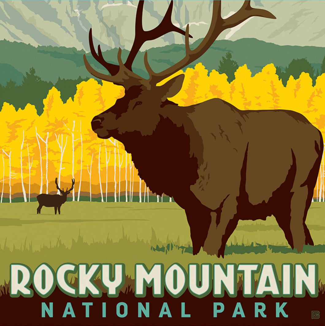 Jigsaw Puzzle Rocky Mountain Nation Park