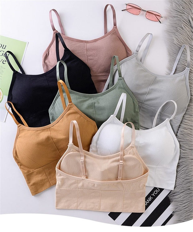 Gym Accessories Online Breathable Anti-Sweat  Padded Sports Bra