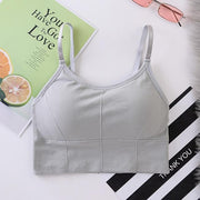 Gym Accessories Online Gray / Free Size / D Breathable Anti-Sweat  Padded Sports Bra