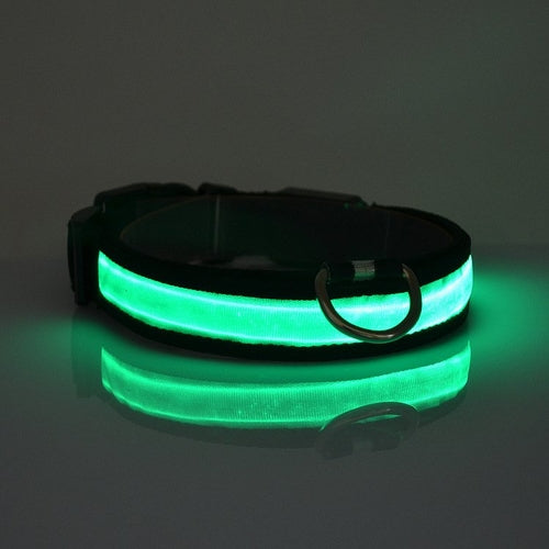 LED Light Up Dog Collar