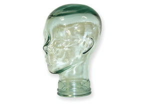 GTH1:  Glass Head for Training