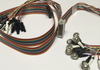 Tin EEG cup electrodes with rainbow quick connect lead-wire strand and touch proof safety sockets