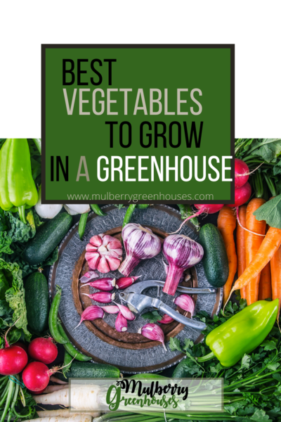 best veggies to grow in a greenhouse