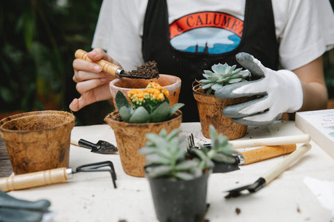 A young person is gardening and potting soil in a pot