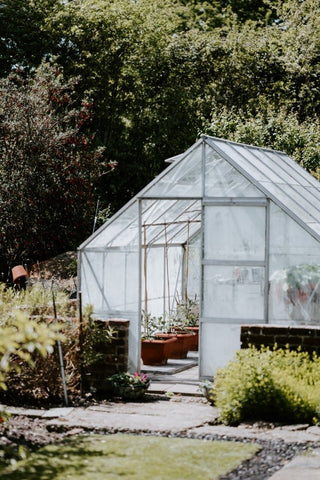 A greenhouse in a sunny spot with an open door