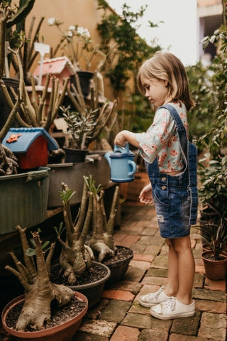 A little child watering plants