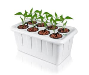 Image of SuperCloset SuperBox LED Smart Grow Box - Mulberry Greenhouses