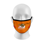 The Cheetahs Mask 5-pack | ADULT