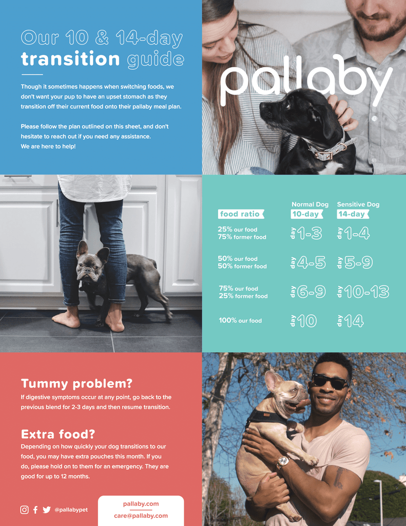 pallaby transition guide