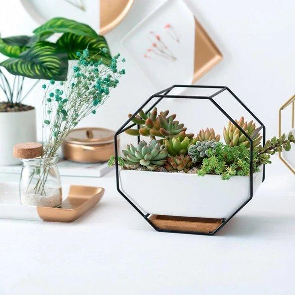 Agya - Iron Frame Ceramic Geometric Planter - Lala Lamps Store