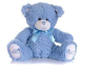 Baby boy/girl teddy