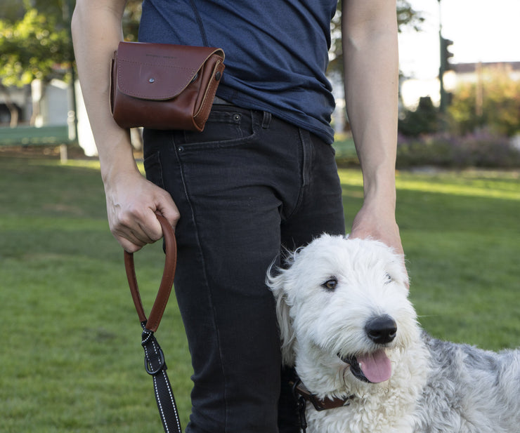 Pair it with the Wag Hip Pack (Optional) and Wag Dog Leash (Optional) for a Dog Walking Kit